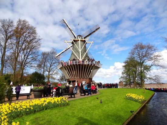 Keukenhof-flores-amsterdan-holanda-blogdalari-lariduarte.com
