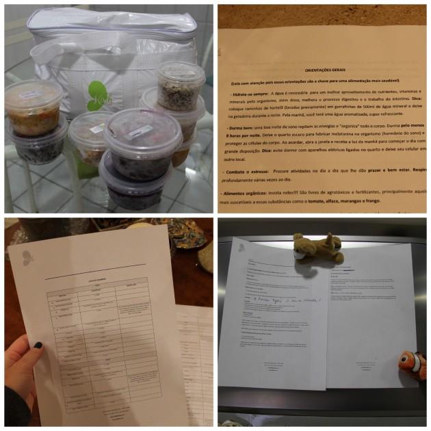 Bolsa térmica com alguns dos congelados, lista de orientações, lista de compras para levar ao mercado, e a dieta do day 1 na geladeira