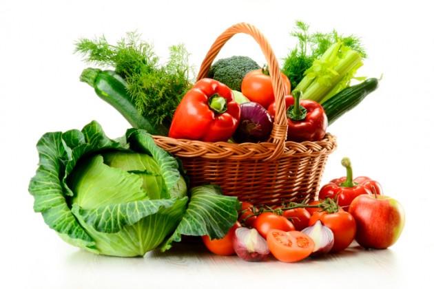 Resultado de imagem para foco na alimentação