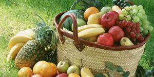 Saúde em foco: tudo sobre alimentos orgânicos
