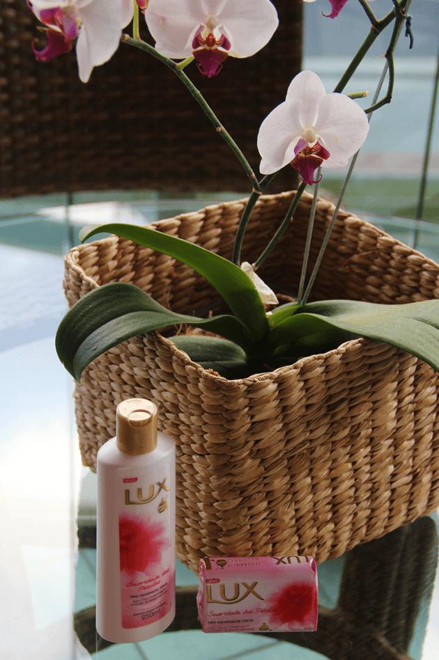 LUX-fragrância-Chácara-Tropical-Lari-Duarte-blog-dicas-12