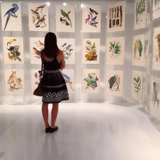 Flagra na mostra Brasiliana no espaço Itaú Cultural