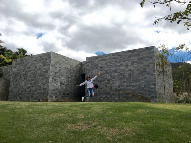 Inhotim-museu-parque-como-chegar-informações-tudo-sobre-Brumadinho-onde-se-hospedar-dicas-roteiro-programação-infos-Minas-Gerais-Fotos-Inhotim