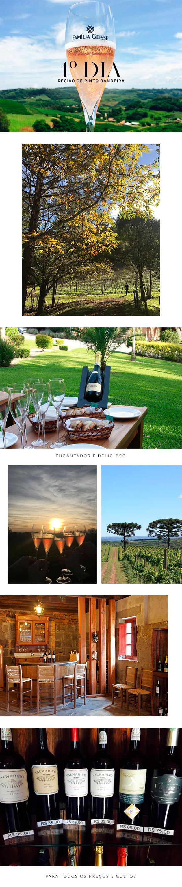 Tudo-sobre-o-Vale-dos-Vinhedos-sul-do-Brasil-região-de-vinho-Bento-Gonçalves-guia-de-viagem-roteiro-dicas-Brasil-destino-no-Brasil-blog-Lari-Duarte-vinho