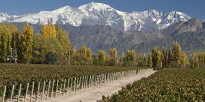 Tudo sobre Mendoza,     Argentina (Parte #01)
