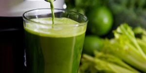 Saúde em foco: montando o seu suco verde